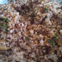 Season with salt, pepper, and roasted garlic and herb seasoning. Stir to combine.